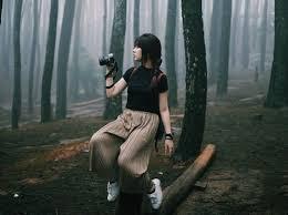6 Daftar Hutan Pinus Di Pulau Jawa Yang Paling Populer